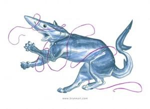 Blue-SharkCat-BrynnMetheney