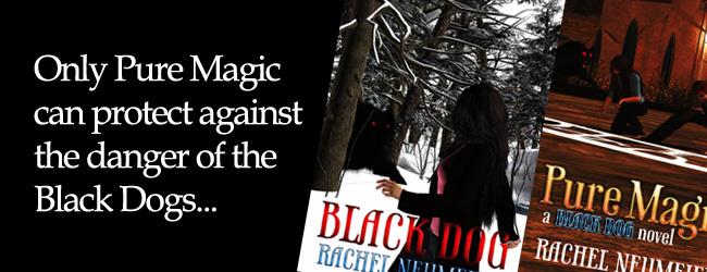 Slide: Black Dog 2016